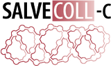 Salvecoll® – Bio-plastic non-crosslinked collagen injection